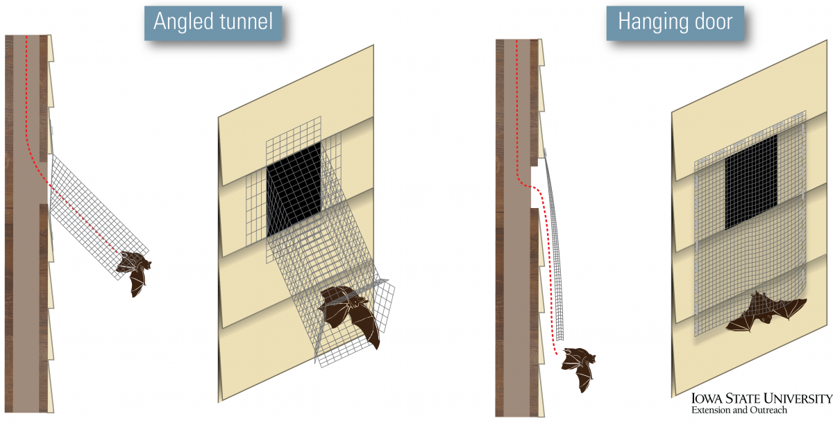 Graphics of bat doors to use