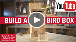 youtube icon and play button over bird house on a workbench