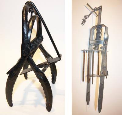 scissor-jaw trap and harpoon trap