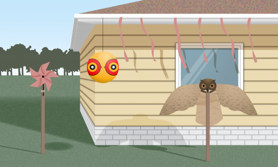 Methods of woodpecker deterrent on house including reflective streamers, artificial owl, pinwheel, and balloon with fake eyes