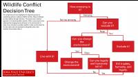 Wildlife conflict decision tree