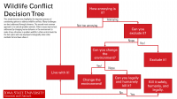 Wildlife conflict decision tree
