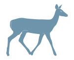 white-tailed deer silhouette