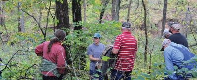 People in the woods learning about trees during extension educational program