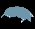 mole silhouette