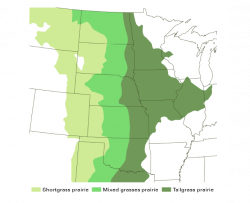 map of shortgrass, mixed grass, and tallgrass prairie in the central United States