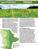Prairies article