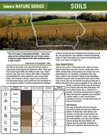 Soil article