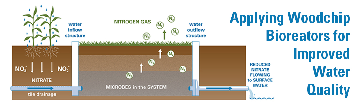 Infographic: Applying Woodchip Bioreactors for Improved Water Quality