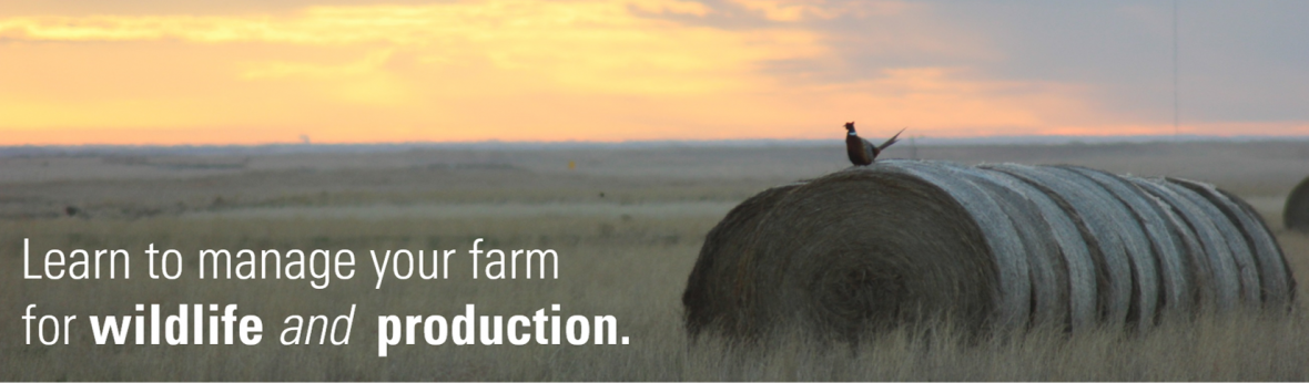 Learn to manage your farm for wildlife and production.