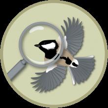General Regional Wildlife Information