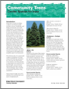 Conifer Species for Iowa -- Community Trees