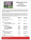 Small-stature Trees for Iowa - Ash Alternatives