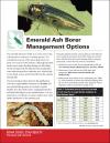Emerald Ash Borer Management Options