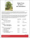 Shade Trees for Iowa - Ash Alternatives