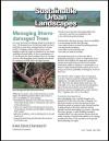 Managing Storm-Damaged Trees - Sustainable Urban Landscapes
