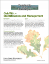 Oak Wilt - Identification and Management - Sustainable Urban Landscapes