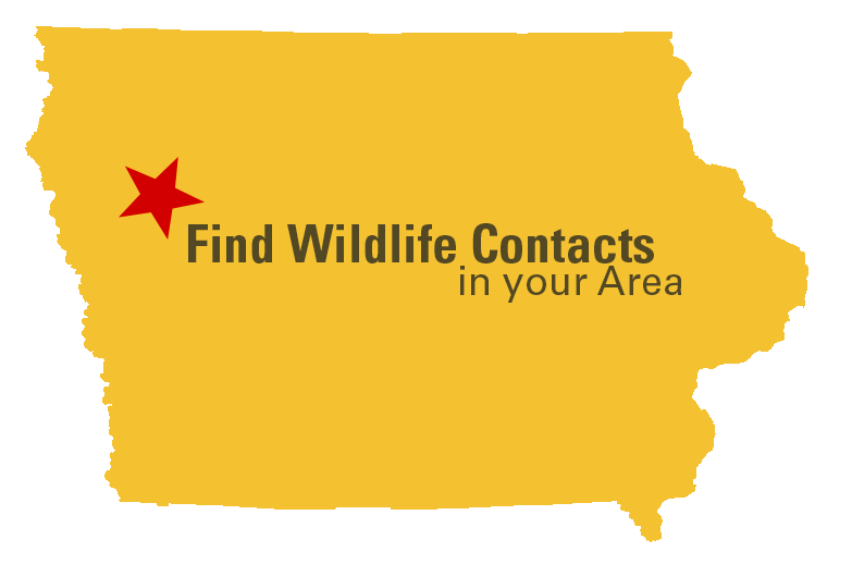 Find Wildlife Contacts in your Area